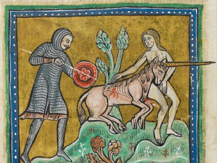 Мифические единороги любят девственниц или ошибки зоологов Средневековья