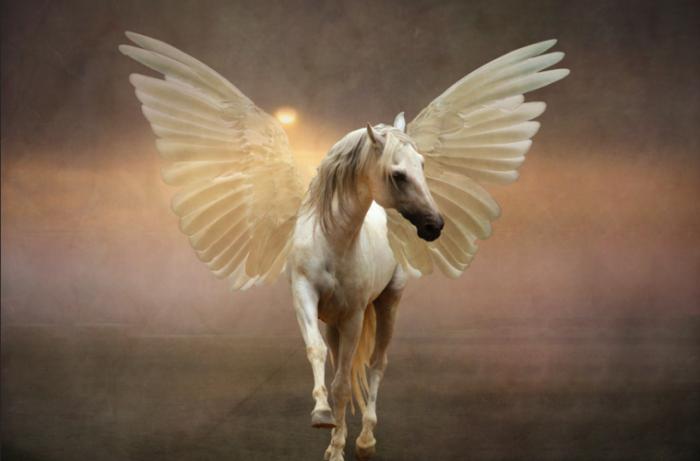 пегас конь белый с крыльями