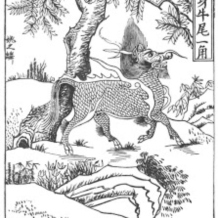 китайский единорог